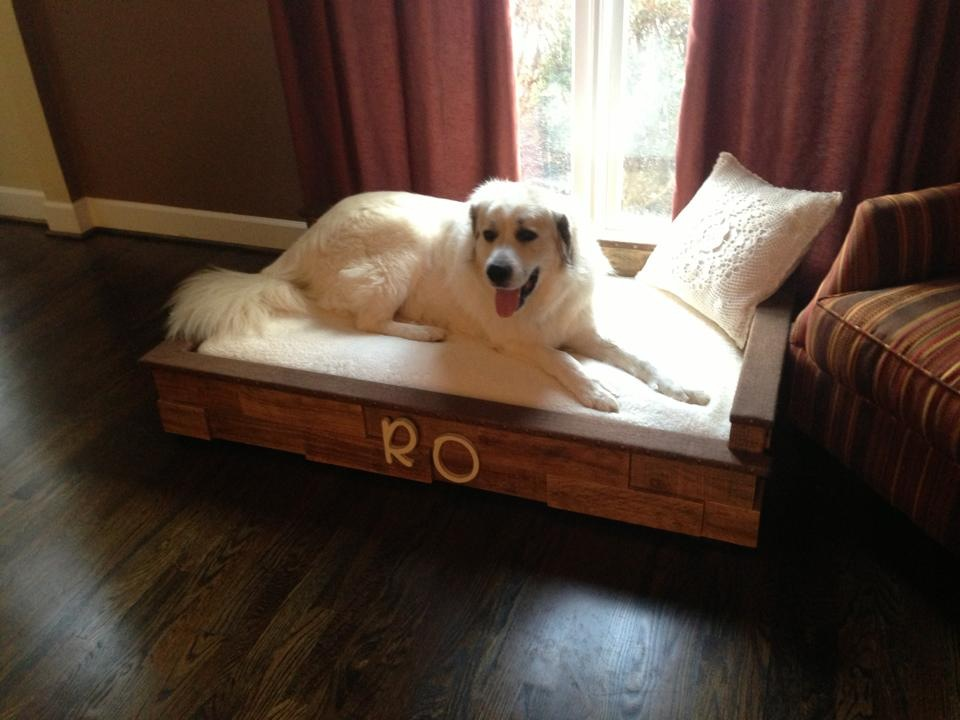 King-Sized Dog Bed
