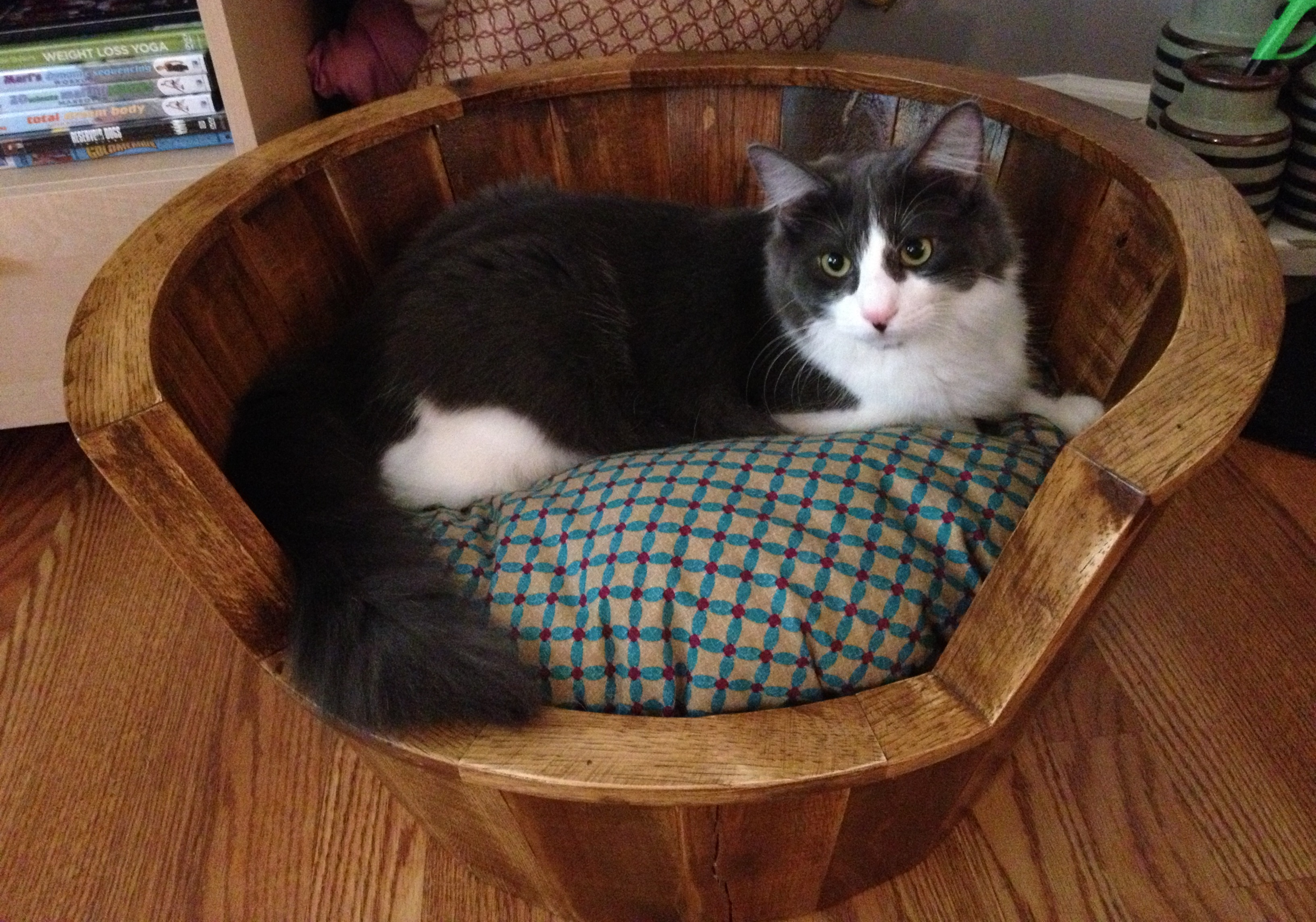 Kitty Barrel Bed